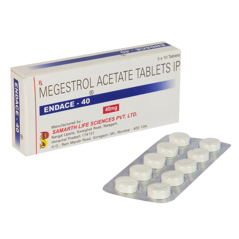 エンデース40(酢酸メゲストロールIP)