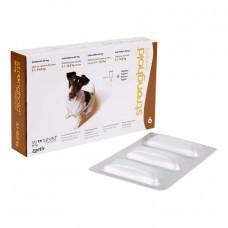 ストロングホールド(EU版レボリューション)小型犬用6本