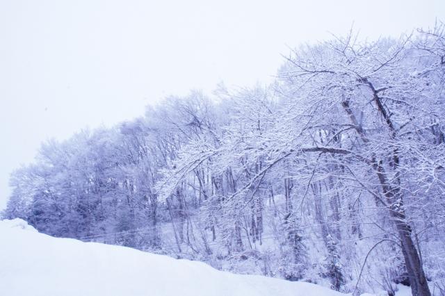 寒くなると落ち込む、寝すぎる、食べ過ぎる…これって冬うつ?